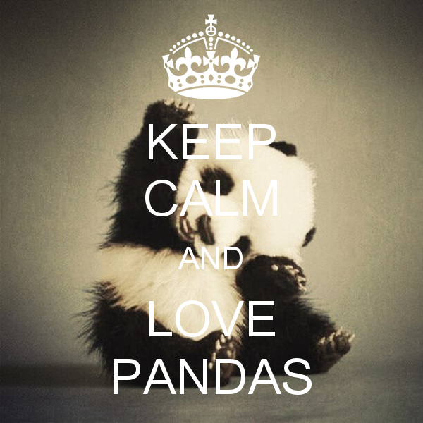 keep-calm-and-love-pandas-782